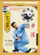 DVD Bagua Zhang Footwork