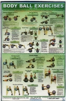 Body ball Upper/Lower Body Poster