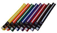 Warrior Striped Coloured Belts