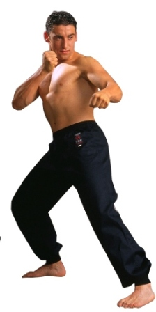 Warrior Black Kung Fu Pants