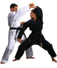 Warrior Meijin Gold Label Black Canvas 4-5