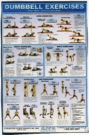 Dumbbell Core/Back/Chest and Lower Body