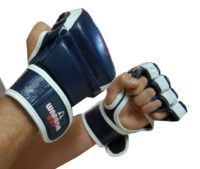 Warrior MMA Gloves