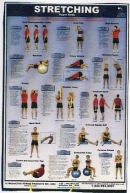 Stretching Upper Body Poster