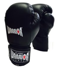 BG10 Boxing Glove 12oz 4