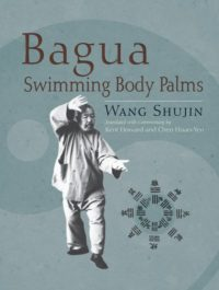 Bagua Swimming Body Palms
