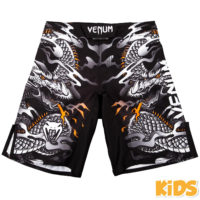 V03397 FRONT fs_kids_dragon_flight_black_white_1500_00