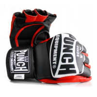 MMA-Training-Mitts-1